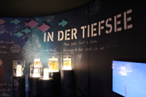 Ins rechte Licht gerückt: Tiefsee-Lebewesen (Foto: Philipp Schrögel)