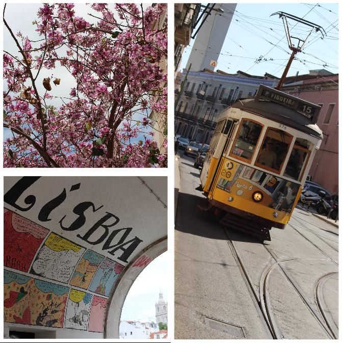 Collage mit Straßenbahn, Torbogen und blühendem Baum